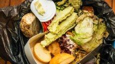 Polacy marnują ogromne ilości jedzenia. W koszu ląduje w sumie 9 mln ton rocznie. Najwięcej wyrzucamy chleba.