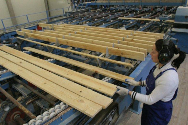 Wartość produkcji polskiego przemysłu opartego na drewnie sięga 100 mld złotych rocznie.