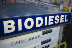 Technologia produkcji biodiesla z Poznania ma być nie tylko ekologiczna, ale opłacalna finansowo.