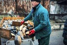 Rybacy z Półwyspu Helskiego alarmują, że coraz częściej z ich sieci wysypują się chore i wychudzone ryby