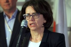 Anna Streżynska, Minister Cyfryzacji