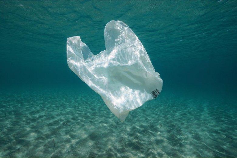 Biodegradowalne torby wytrzymały w wodzie i glebie 3 lata.