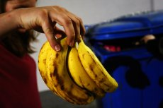 Rocznie sklepy wyrzucają miliony ton niewykupionego jedzenia. Tymczasem ustawa, która miała to zmienić, utknęła.