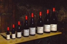 Polacy kupują coraz więcej tzw. małpek z winem