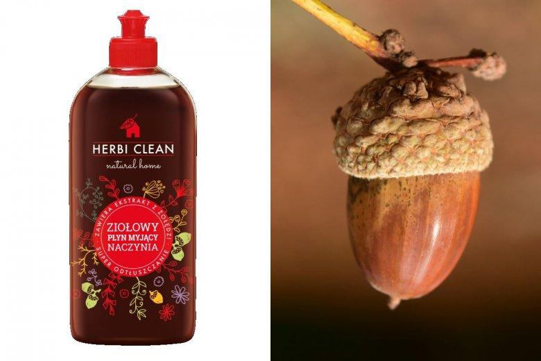 Zespół Herbi Clean opracowuje produkty chemii domowej na bazie ekstraktu z żołędzi.