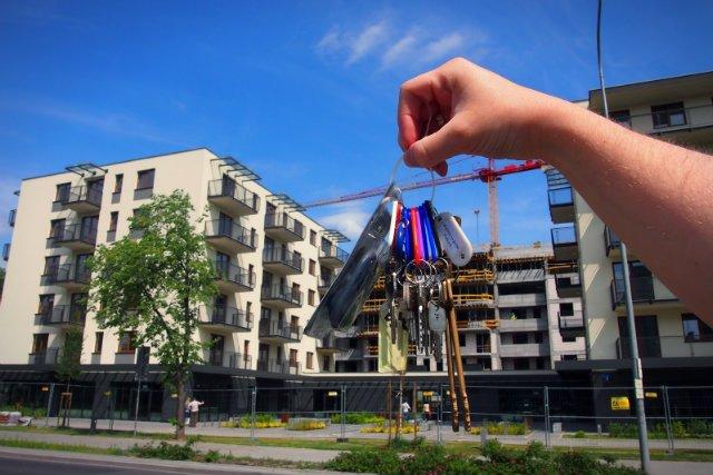 Młode małżeństwo kupiło polskie mieszkanie, chce je urządzić tylko polskimi markami, a swoje wysiłki opisuje na blogu