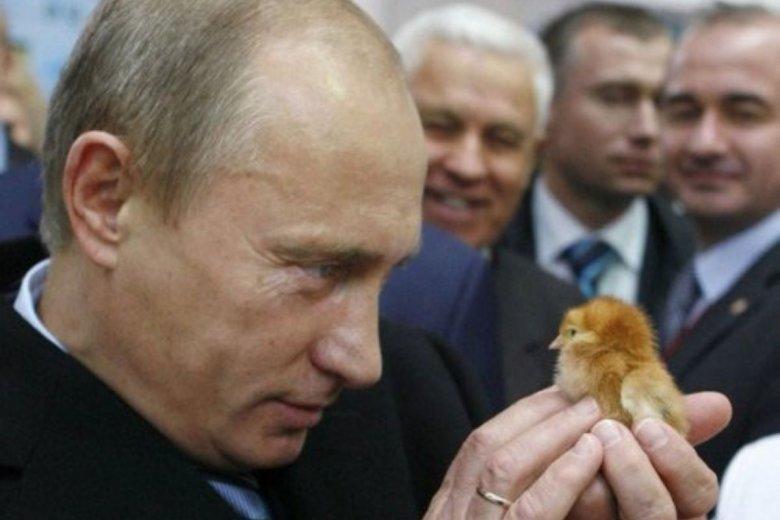 Putin w zeszłym roku zatroszczył się o najmłodszych i wprowadził program prorodzinny. Teraz w Moskwie pojawiła się mowa o rozszerzeniu programu.