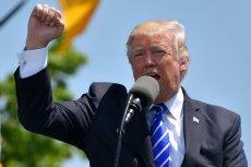 Donald Trump ma przynajmniej częściowo zawdzięczać swoje zwycięstwo zmasowanej propagandzie online.