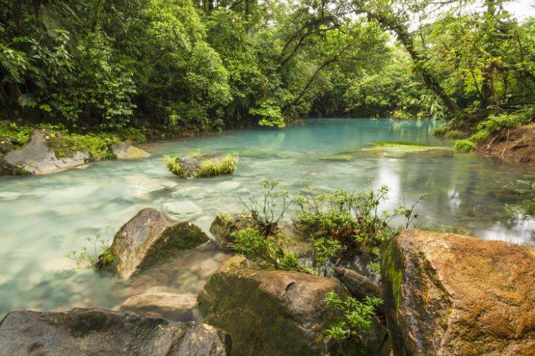 Kostaryce w ostatnich miesiącach pomogły obfite deszcze.