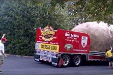 Ziemniaki z Idaho biją rekordy pod względem wagi i wielkości.