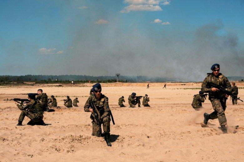 Wspólne manewry armii i WOT na poligonie w Nowej Dębie.