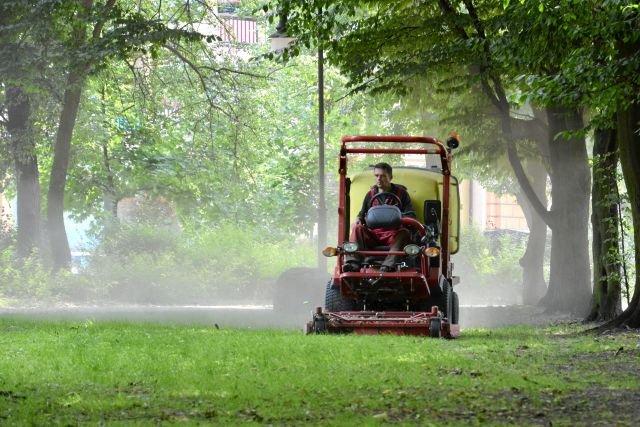 Koszenie traw w miastach to produkcja spalin i kurzu oraz niszczenie różnorodności biologicznej