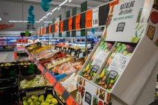 Prosta historia ze Szczecinka: gekon siedział sobie spokojnie w sałacie, gdy natknęła się na niego klientka marketu.