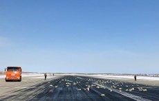 Na Syberii spadł deszcz złota i innych cennych kruszców.