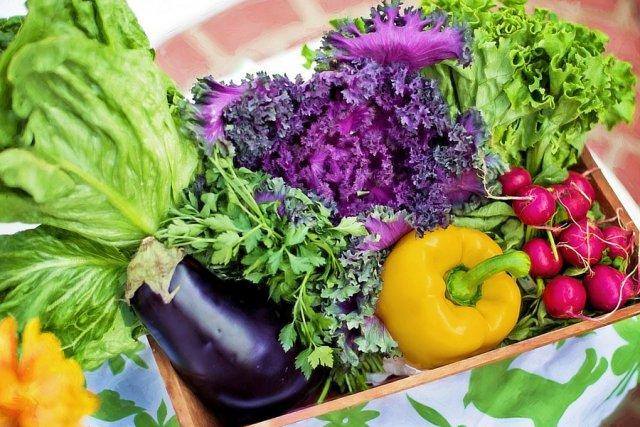 Dieta roślinna to ogromne korzyści nie tylko dla zdrowia, ale i dla świata