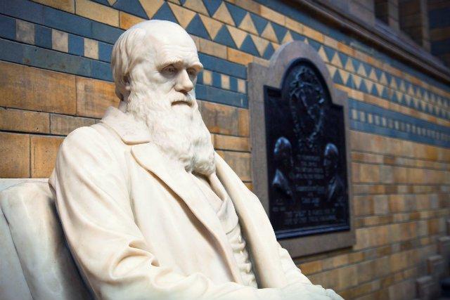 Z perspektywy współczesnego człowieka Darwin zostałby uznany za zwykłego obiboka