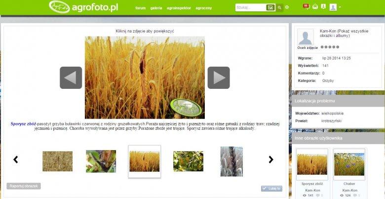 Aplikacja Agroinspektor pozwalająca rolnikom dzielić się informacjami o występujących agrofagach
