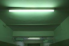 Świetlówki z rtęcią wciąż obecne są w wielu biurach i urzędach.
