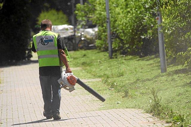 Po kosiarzach do akcji wkraczają pracownicy z dmuchawami, wytwarzając chmury spalin, hałas i tumany kurzu