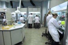 W laboratoriach Selvity powstają nowoczesne leki, które mają hamować rozwój białaczki, chłoniaka i szpiczaka. Projekt otrzymał wsparcie finansowe i wkracza w fazę badań przedklinicznych i klinicznych
