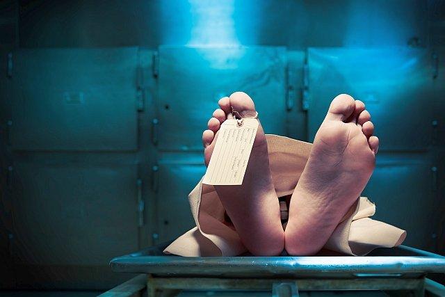 PayPal wysłał do zmarłej klientki list, w którym pisze, że jej śmierć łamie regulamin serwisu i nie tak załatwia się sprawy