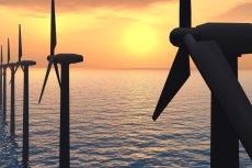 Fermy wiatrowe są tańsze w budowie, eksploatacji niż te tradycyjne. Rybacy jednak mają wątpliwość i niepokoją się o swój biznes.