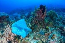Naukowcy wykryli ogromne złoża niewidocznych gołym okiem fragmentów mikroplastiku na dnie Morza Śródziemnego.