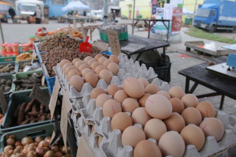 GIS ostrzega przed salmonellą na skorupkach jajek