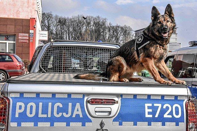 Obecnie brakuje w Polsce ponad 5300 policjantów.