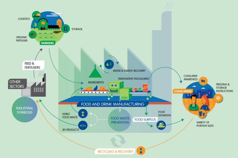 Schemat gospodarki cyrkularnej na przykładzie zrównoważonego łańcucha dostaw żywności