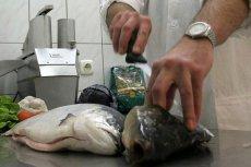 690 000 łososi uciekło z hodowli norweskiej firmy Marine Harvest. Zawierają antybiotyki groźne dla ludzi