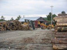 Dotychczas w tartakach blisko 1/4 drewna się marnowała, ale teraz można ją dobrze wykorzystać