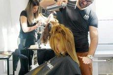 Najbardziej popularnym dniem na wizytę u fryzjera lub kosmetyczki przed świętami jest 22 grudnia. Jednak największe zyski salony generują na dzień przed Wigilią.