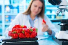 Akcelerator FoodForward pomoże wprowadzać innowatorskie technologie w branży gastronomicznej.