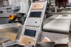 Robot Daisy jest w stanie rozebrać nawet 200 iPhone'ów w ciągu godziny.