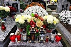 Złodziejka cmentarnych kwiatów złapana dzięki nadajnikowi GPS